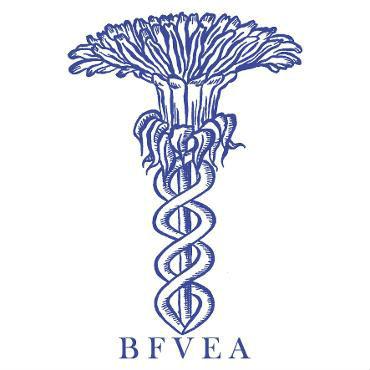 SQUARE_BFVEA_Logo_BLUE.jpg.opt370x370o0,0s370x370